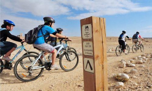 bicycle-tour-768x490